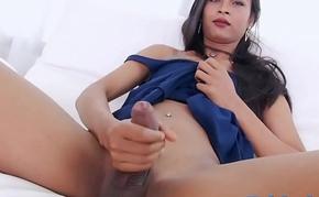 Kinky shemale masturbates her hard dick